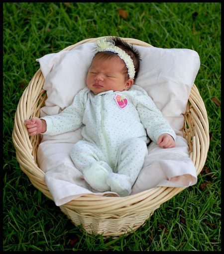 6-19-09 Lily Kate Baby in a Basket Photo Op Web