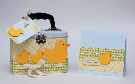 Sweet Baby Gift Duo - Nested Duck Wavy Borderabilities - Keri Lee Sereika WEB